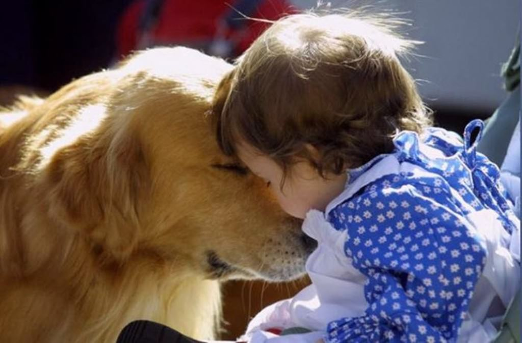 Любовь картинки про любовь www bestfon com ua