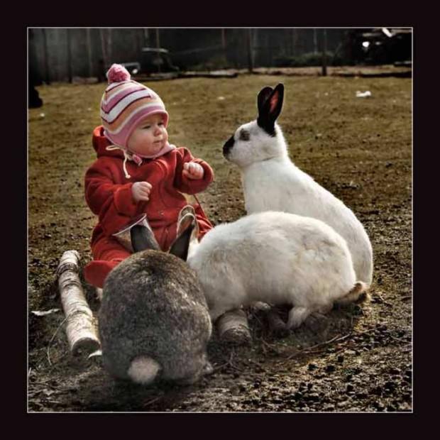 Смешные картинки животных - Выпуск № 13 (Животные и дети)