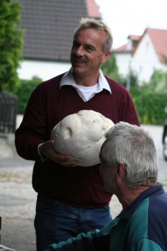 Лангерманния гигантская или головач гигантский (лат. Langermannia gigantea) (англ. Giant Puffball)