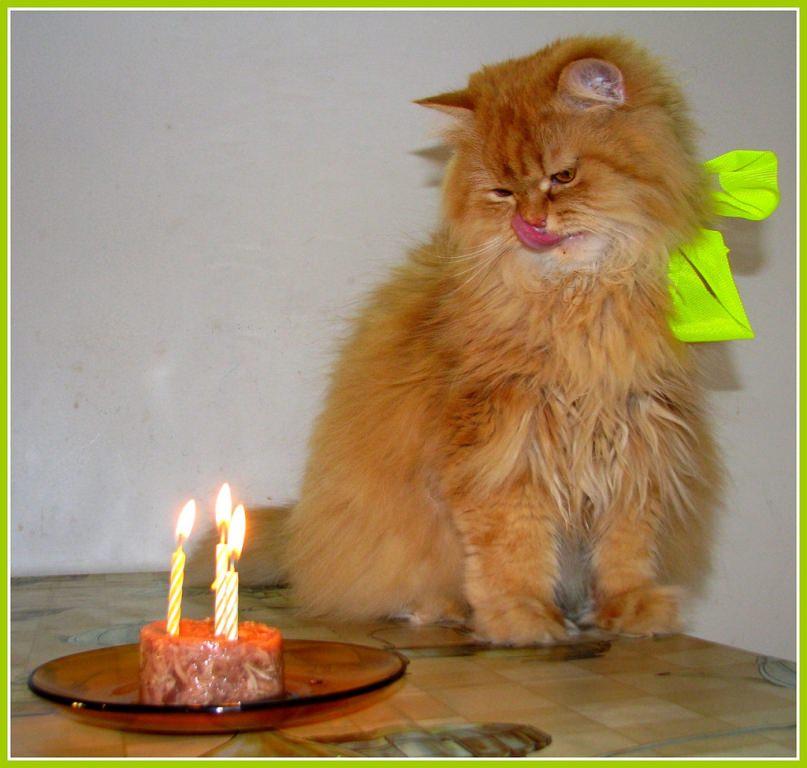 картинки для фотографий с днем рождения