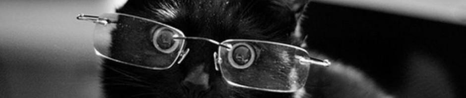 Смешные картинки животных — Выпуск № 51 (Коты в очках)